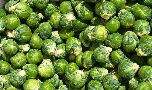 Фото - Вирощування брюссельської капусти