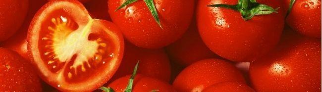 Фото - Вирощування гарного врожаю томатів