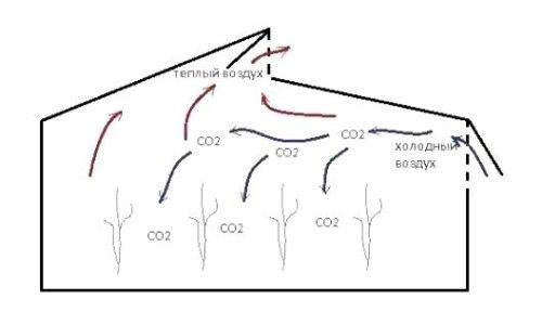 Схема повітрообміну в теплиці Митлайдера.