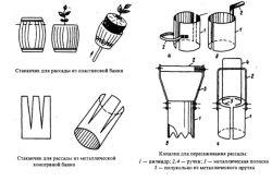 Фото - Вирощування перцю в теплиці
