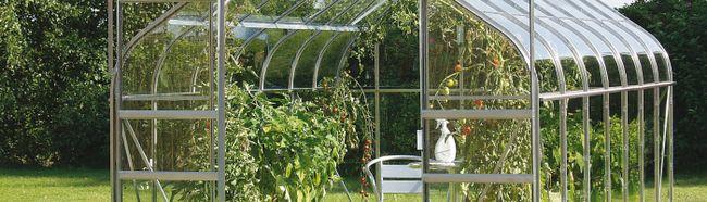 Фото - Вирощування помідорів в теплиці з полікарбонату