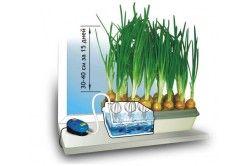 Гідропонна установка для вирощування цибулі