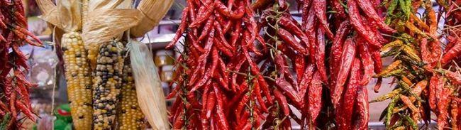 Фото - Вирощування пекучого перцю в тепличних умовах