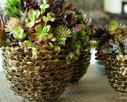 Глиняні горщики для кімнатних рослин, виконані у вигляді екзотичних плодів
