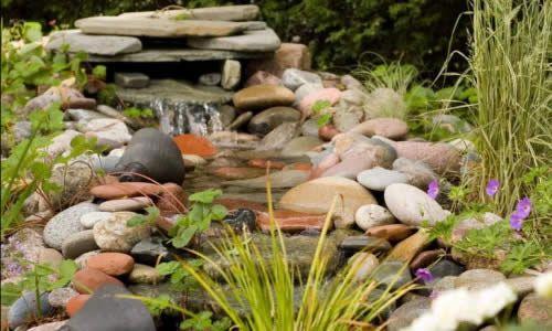 Фото - Живий струмок в саду